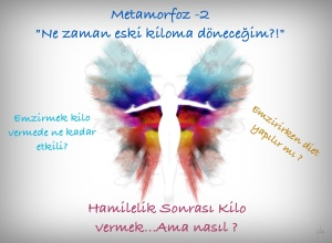 metamorfozkilo